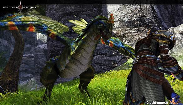 Drago colorato Dragon's Prophet
