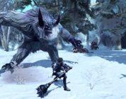 RaiderZ: annunciato il rilancio del gioco